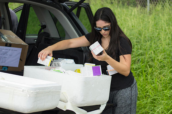 USF Health physician Elimarys Perez-Colon sorts insulin to be delivered for patients in hospitals, shelters and rural communities in Puerto Rico.