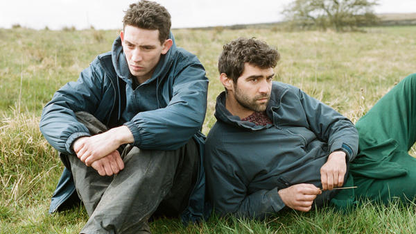 Shantay, Ewe Stay: John (Josh O'Connor) and Gheorghe (Alec Secareanu) look sheepish in <em>God's Own Country.</em>