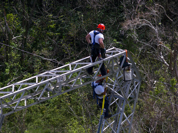 Whitefish Energy workers restore power lines damaged in Barceloneta, Puerto Rico, on Oct. 15. Gov. Ricardo Rosselló has ordered an audit of the $300 million deal the island's power authority made with Whitefish.