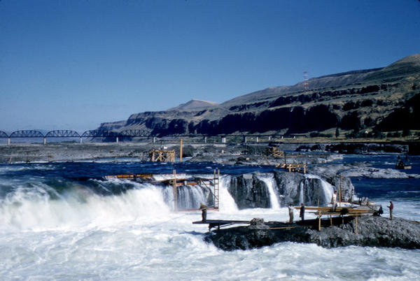 Celilo Falls as seen in September 1956. The falls and nearby Native American settlements were submerged by the construction of The Dalles Dam in 1957.