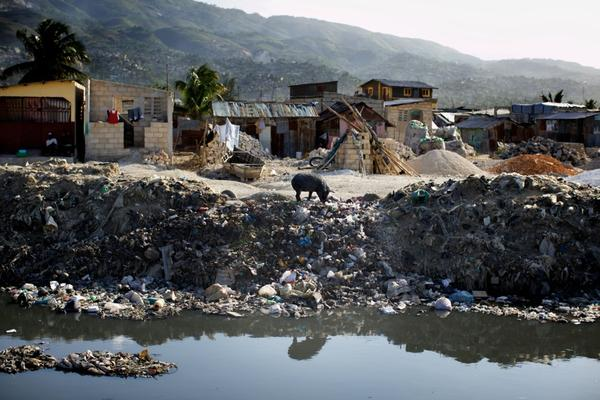 A lone pig roots through trash along a sewage canal that runs from the center of Port-au-Prince through Cite de Dieu. During the rainy season, the canal overflows its banks and fills nearby houses with sewage.