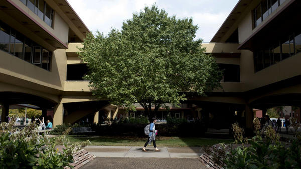A student walks through the quad at Colorado State University in Fort Collins.
