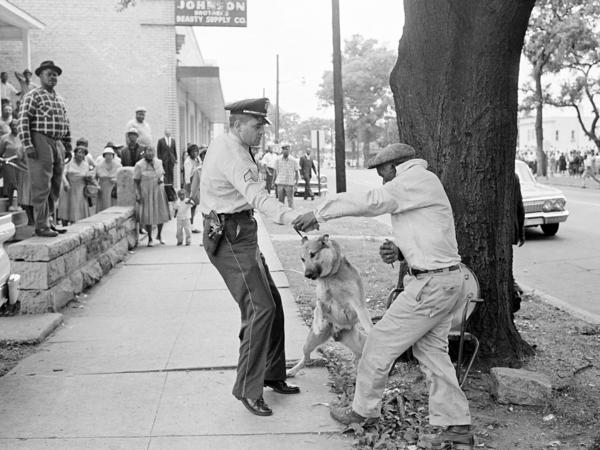 Alabama segregationist Bull Connor ordered police to use dogs and fire hoses on black demonstrators in May 1963.
