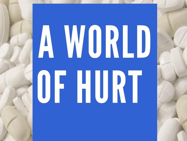 Barry Meier's <em>A World of Hurt</em> is being released by The New York Times Co. as an e-book.