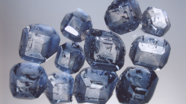Most of the diamonds synthesized from cremated remains come out blue, due to trace amounts of boron in the body. These diamonds, made from the ashes of animals, were created through the same process used to make diamonds from human remains.