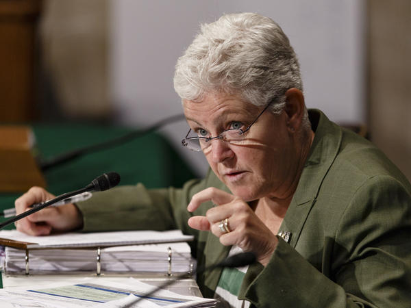 Environmental Protection Agency Administrator Gina McCarthy testifies at an oversight hearing of the Senate Environment and Public Works Committee on Capitol Hill in Washington on July 23.