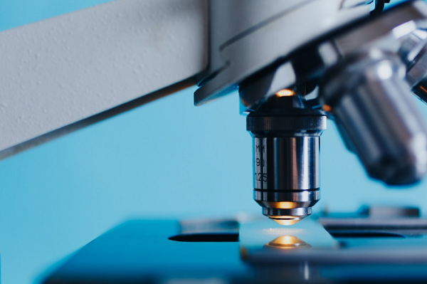 Scientific retractions are on the rise in the United States, according to new data. Meanwhile, the scientific community is pushing for increased rigor and reproducibility of studies.