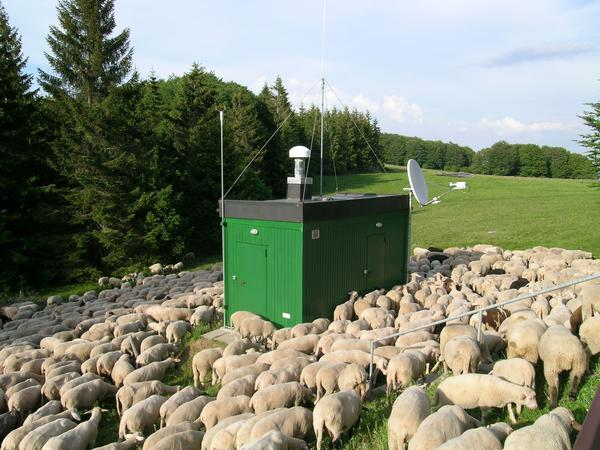 Monitoring stations similar to this one in Germany detected unusual radioactive material over Europe last month.