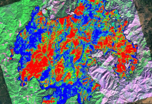 <p>A RAVG (Rapid Assessment of Vegatative Condition after Wildfire) image of the Chetco Bar fire area, produced by the U.S. Forest Service to see where tree damage is located and how severe it is.</p>