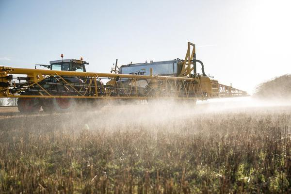Babies born to mothers living in areas of high exposure to pesticides may experience problems, according to a new study.