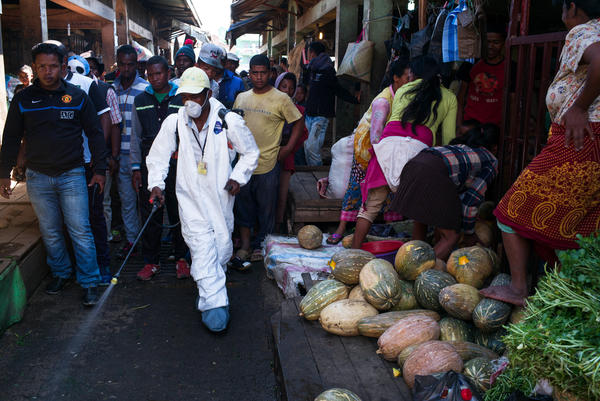 A municipal worker sprays disinfectant during the clean-up of a market in Madagascar's Anosibe district — a measure to fight the outbreak of bubonic plague, which can be spread by a flea bite.
