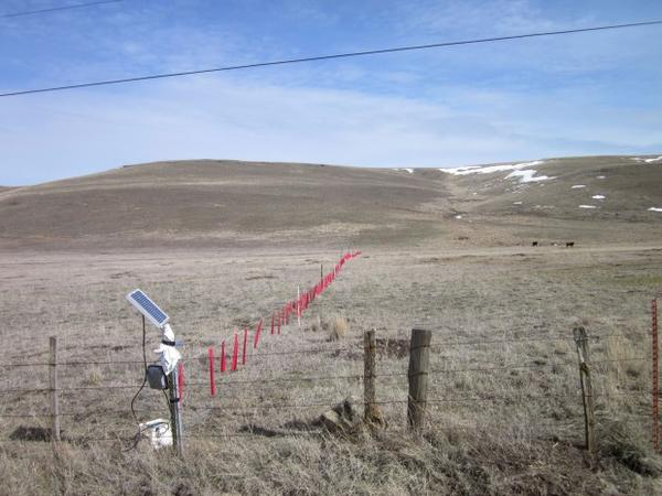 <p>The use of non-lethal techniques like hanging fladry, shown here in red, can deter wolves from cattle or sheep pastures. But ranchers say they are costly, time-consuming and marginally effective. Wolf advocates say they are too seldom used or used improperly, like the incomplete line in this photo from Eastern Oregon.</p>