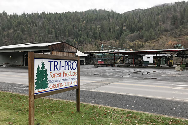 The Tri-Pro Forest Products facility in Orofino, Idaho, closed in October after operators said they didn't have a steady enough supply of logs to keep the sawmill running and profitable.