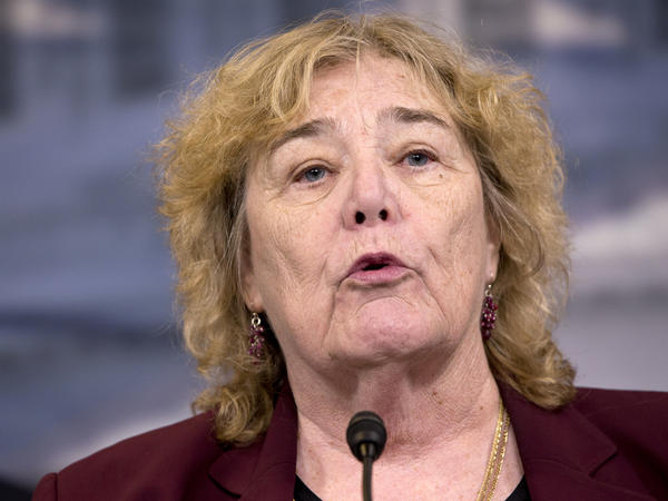 Rep. Zoe Lofgren, D-Calif., says the H-1B program needs a broad reform, including changes to the lottery process that awards the visas.