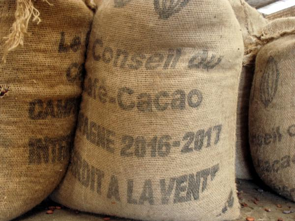 Sacks of cocoa beans at a warehouse in San Pedro. Coffee and Cocoa Council is the government regulator of the Ivory Coast's cocoa industry.