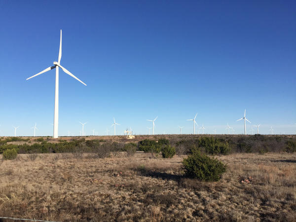 Part of one of the world's biggest renewable energy systems, wind turbines dot the landscape on the edge of Sweetwater, Texas, along with a pump jack pulling up oil.