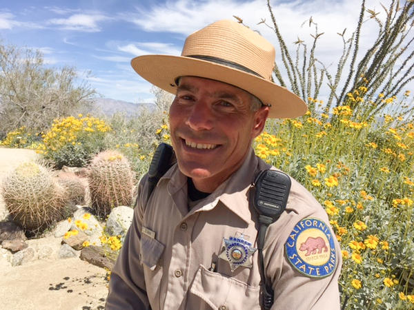 Park ranger Steve Bier says this year's conditions were perfect for such a phenomenon: long steady rain throughout the winter — a remarkable 6 inches in all here — that soaked into the ground.