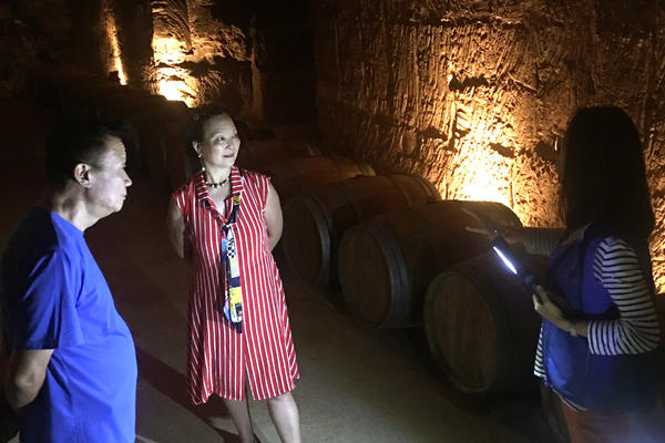 Wang Jiawei and Cao Juanjuan tour a Bordeaux chateau wine cellar, with bottles aged for decades in a vast network of underground rooms. Many of the tourists visiting this French winemaking region are Chinese.