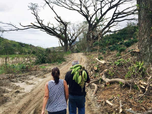 Rebecca and Roberto Atienza return from surveying damage to their coffee farm. Roberto is carrying a fallen plantain bunch he planned to give to a friend.