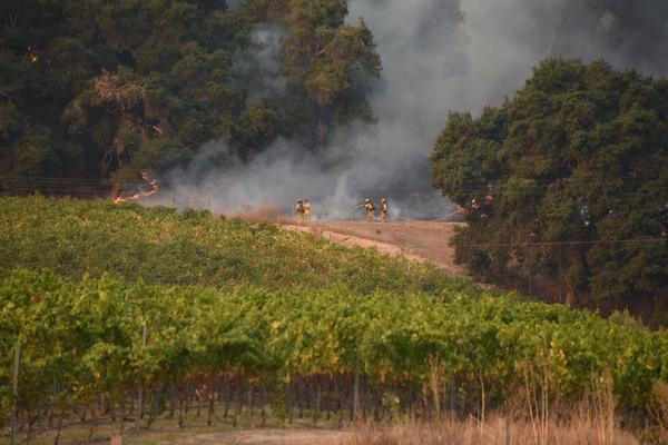 "Firefighters protect a vineyard in Santa Rosa, Calif., on Wednesday. Ken Pimlott, the chief of the California Department of Forestry and Fire Protection, called the fires ""a serious, critical, catastrophic event."""