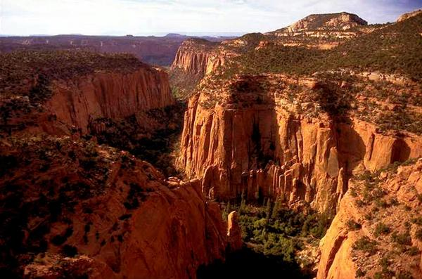 The Upper Gulch section of the Escalante Canyons within Utah's Grand Staircase-Escalante National Monument is shown. Outdoor clothing giant Patagonia and other retailers have jumped into a legal and political battle over President Trump's plan to shrink two sprawling Utah national monuments, a fight that would scare off most companies but buoys customers of outdoor brands that value environmental activism. (Douglas C. Pizac/AP)