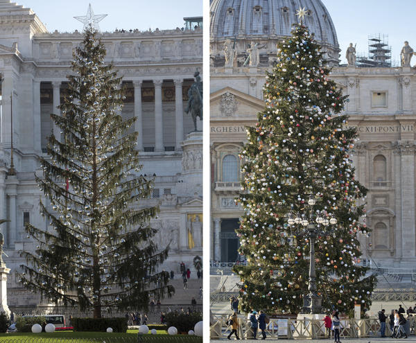 Rome's Christmas tree, nicknamed <em>Spelacchio</em>, stands side by side in this composite with the tree standing in St. Peter's Square at the Vatican.