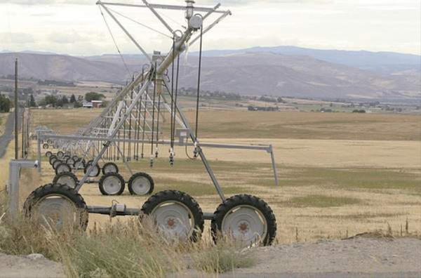 <p>Washington Dept. of Ecology Irrigation equipment sits idle on fields in the Kittitas Reclamation District in Central Washington in early September.</p>