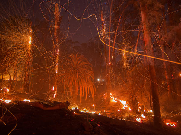 A strong wind blows embers from smoldering trees at the Thomas Fire last week in Montecito, Calif.