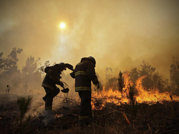 Firefighters dig trenches in an effort to stop the advancement of a forest fire in Concepción, Chile, in January.
