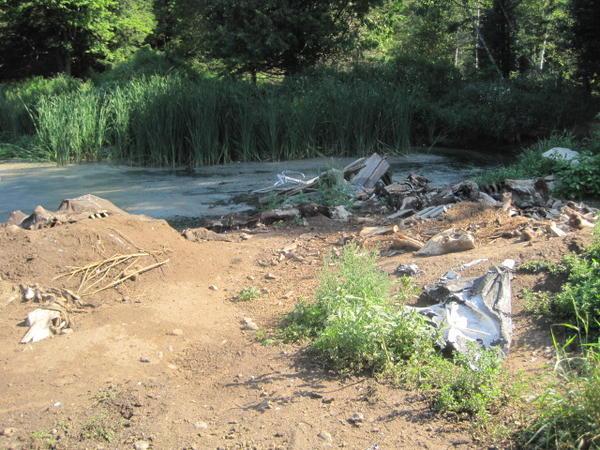 A livestock carcass dump.