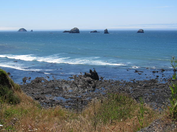 Redfish Rocks Marine Reserve is a cluster of rocks and underwater reefs less than a mile off the Oregon coast near Port Orford.