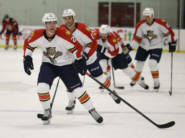 Bobby Butler during hockey training camp when he played for the Florida Panthers in 2014.