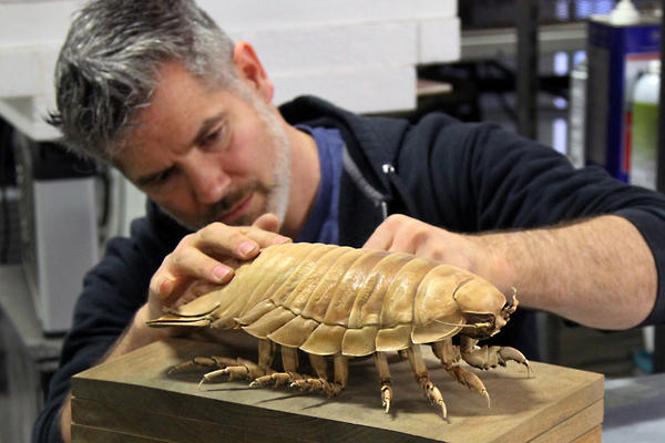 Marley works on a frozen isopod at his Oregon studio.