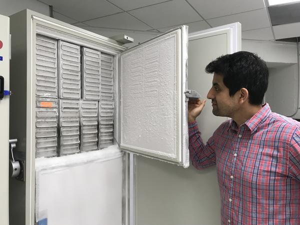 Source Molecular CEO Mauricio Larenas shows off a freezer of samples.