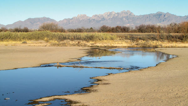 The Rio Grande near Mesilla is mostly effluent.