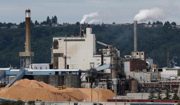 <p>Piles of wood chips sit near the RockTenn paper mill, Wednesday, June 1, 2016, in Tacoma, Washington.</p>