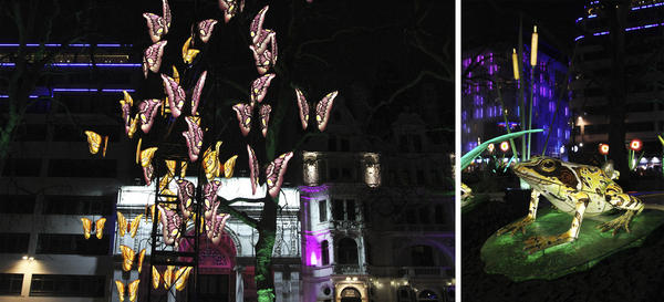The <em>Nightlife</em> installation in Leicester Square includes moths, frogs and a rabbit.