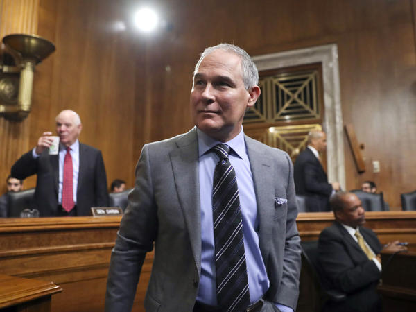 Environmental Protection Agency Administrator Scott Pruitt told the Senate environment committee that he does not remember comments he made in 2016 about then-candidate Donald Trump.