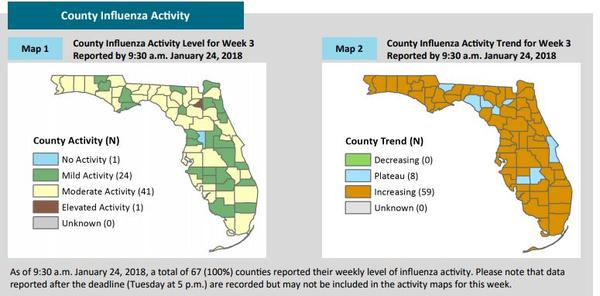 From Florida's Weekly Surveillance Report, the Florida Flu Review.