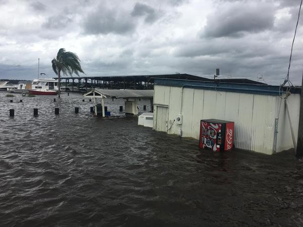 The Doctors Lake Marina parking lot is flooded on Sept. 12, 2017.