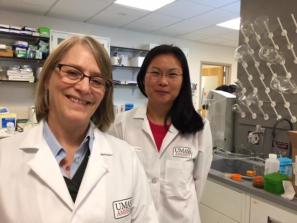 UMass food scientists Lynne McLandsborough, left, and Lili He.