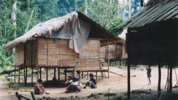 In a small Malaysian village, some residents speak a language that linguists had never before identified. It has now been documented, under the name Jedek, by Swedish researchers.