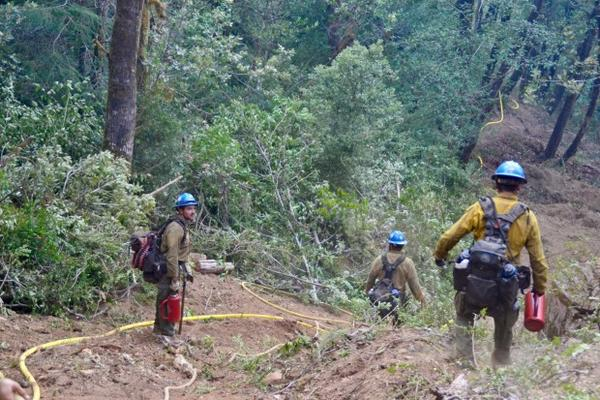 <p>A wildfire firefighting crew works on the Chetco Bar Fire in southwestern Oregon in this undated file photo.</p>