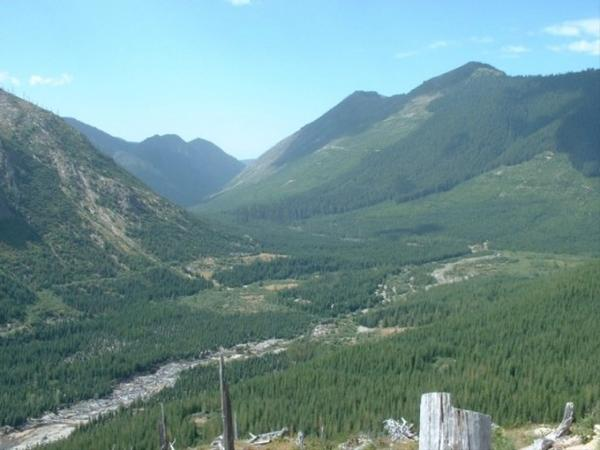 <p>The Green River Valley in Gifford Pinchot National Forest sits adjacent to the Mount St. Helens Volcanic National Monument. It's an area where Canadian company Ascot Resources Ltd wants to begin exploratory mining for copper and gold.</p>