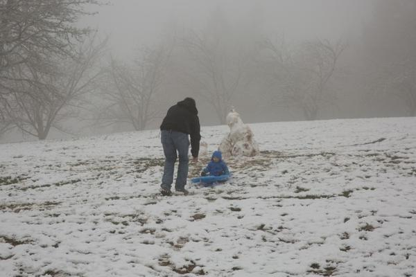 <p>There is just enough snow at Portland's Council Crest Park for this youngster to enjoy a sled ride on Sunday, Feb. 18, 2018.</p>