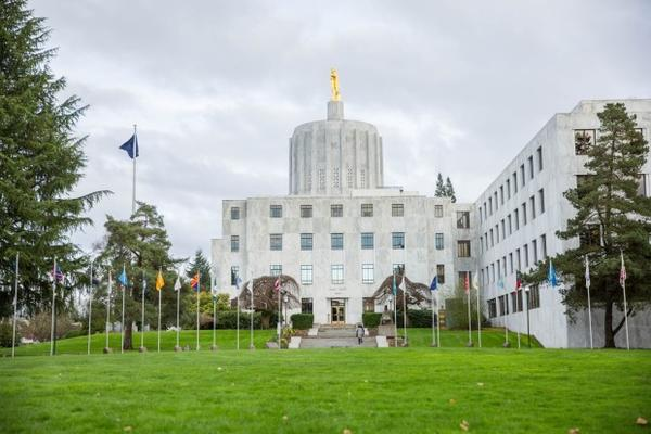 """<p>The Oregon Capitol sits behind the """"Walk of Flags"""" in Salem, Oregon, Saturday, March 18, 2017.</p>"""