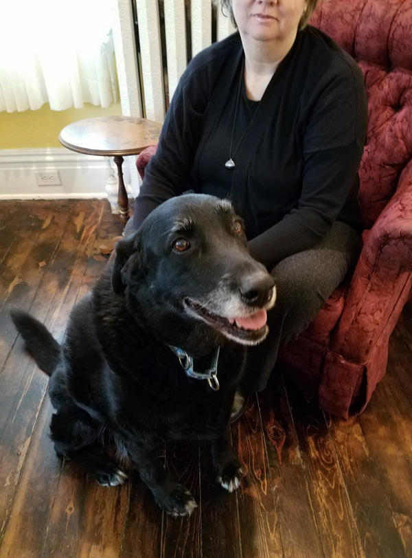 Ten years ago, black Lab mix Abby ran away from home. Now, she has been reunited with her owner Debra Suierveld, who tells NPR's Scott Simon that Abby has fit right back in with the family.