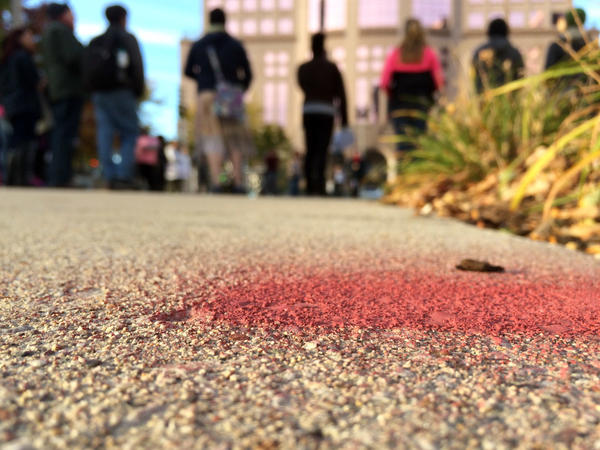 The family of Dontre Hamilton marked a spot in red paint to memorialize where he was shot by a Milwaukee police officer.