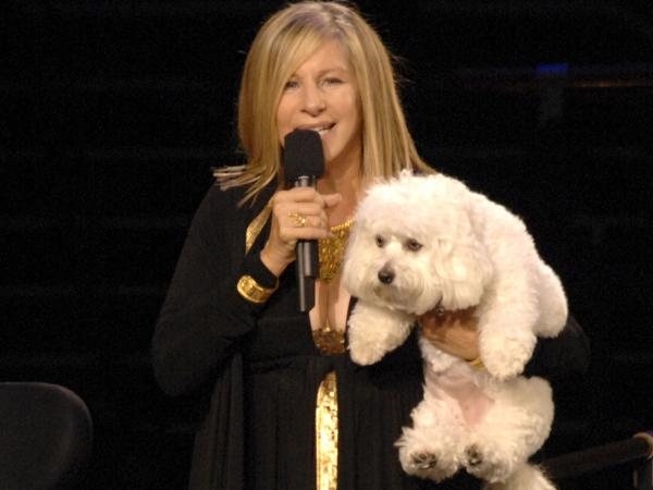 Barbra Streisand, on stage with her dog, Samantha, who was cloned to create Miss Violet and Miss Scarlett.