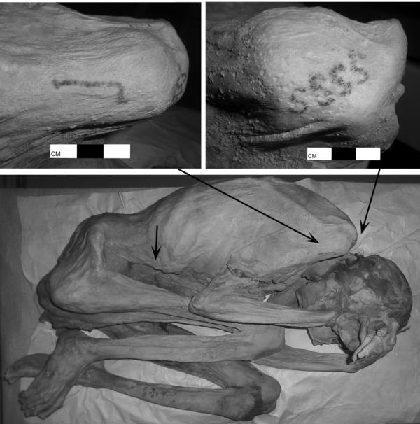 "Infrared imaging of a female predynastic mummy reveal a tattooed ""S"" pattern and a marking that Egyptologists believe shows an item used in rituals."